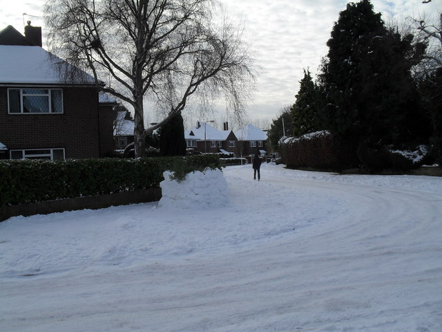 Looking from Pembury Road into a snowy Norris Gardens
