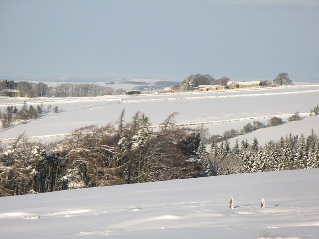 Snowy pastures above Studdon Park