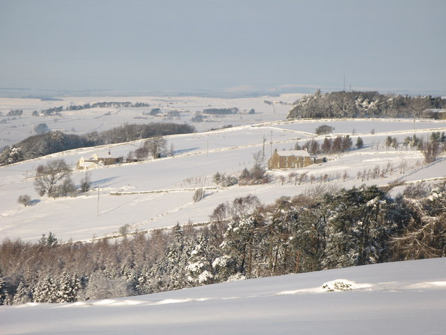 Snowy pastures above Studdon Park (2)