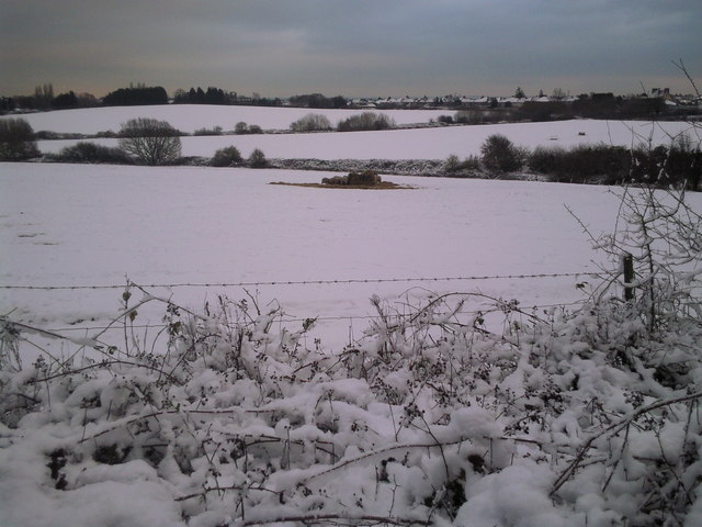 The snow-covered fields of Woodlands Farm