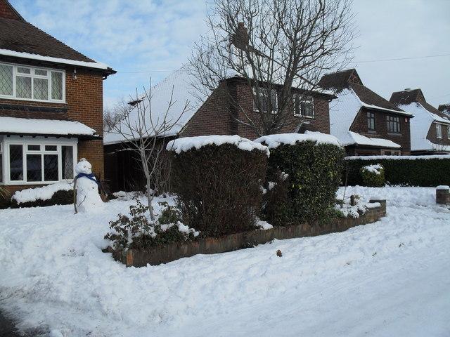 Snow covered homes in Pembury Road