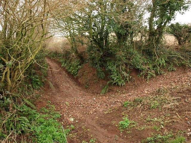 Radway Lane from Boy-In-The-Bush