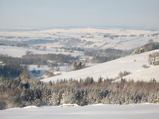 Snowy East Allen Dale north of Studdon Park
