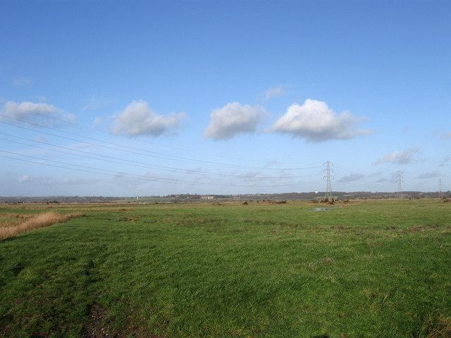 Raylands Marsh