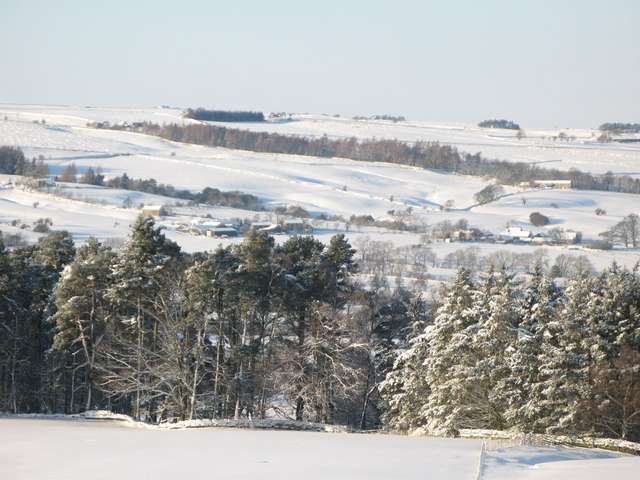 Snowy East Allen Dale west of Studdon Park