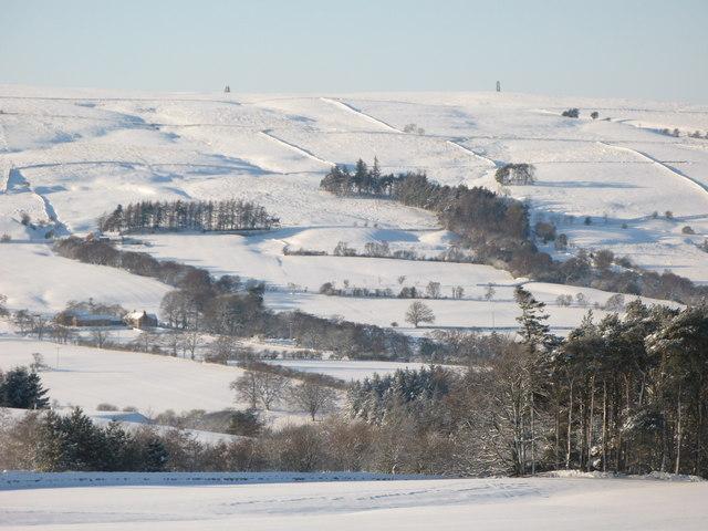 Snowy East Allen Dale near The Hagg