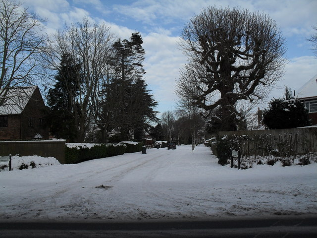 Looking across Emsworth Road into a snowy Meadowlands
