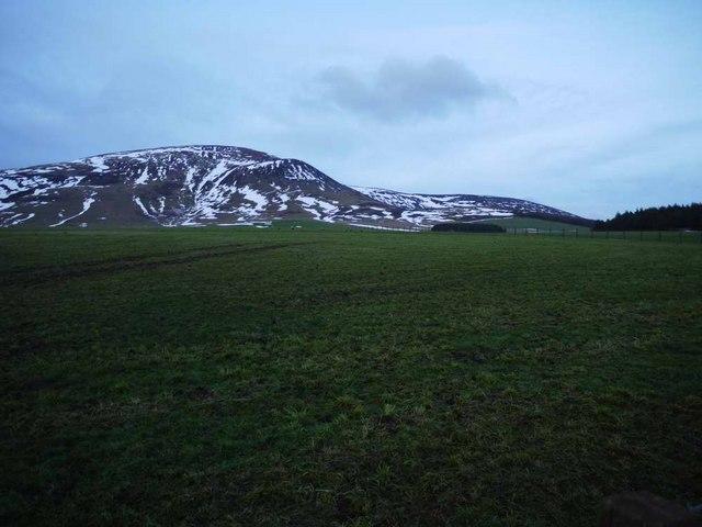 Fields south of Millrig