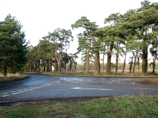 Junction of three unnamed lanes SE of Cockley Cley