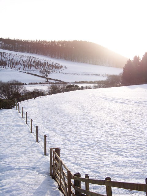 Abbey St Bathans Snowscape