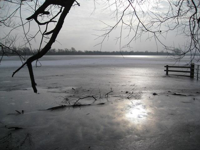 Winter sunshine on Bury Fen