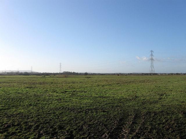 Church Acre Drove Marsh