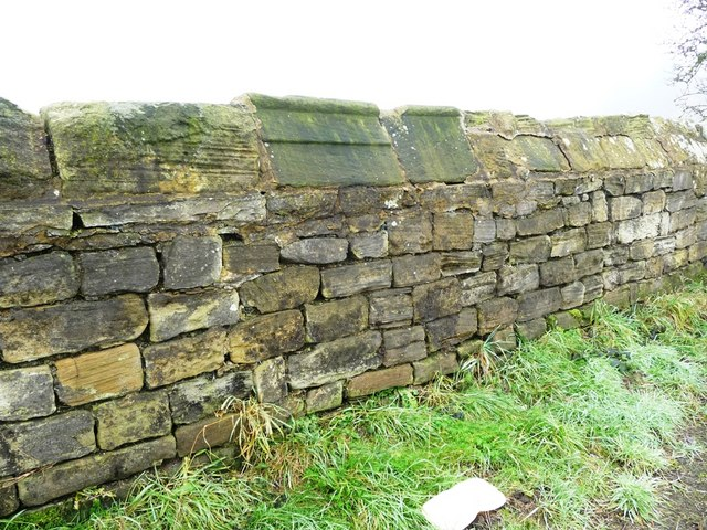 Stone wall with a random assortment of coping stones