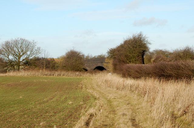 Looking north along the bridleway across Marton Moor