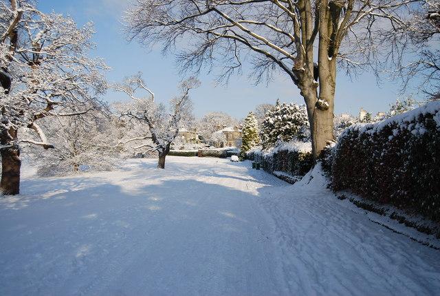 Snow on Calverley Park
