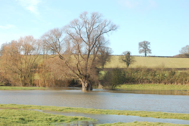 River Itchen in flood near Marton (1)