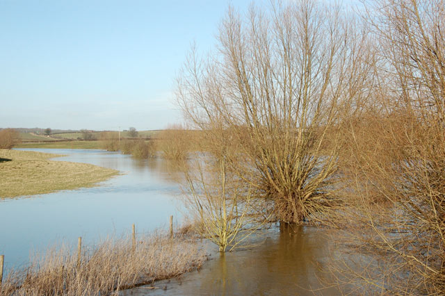 River Itchen in flood near Marton (4)
