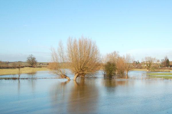 River Itchen in flood near Marton (5)