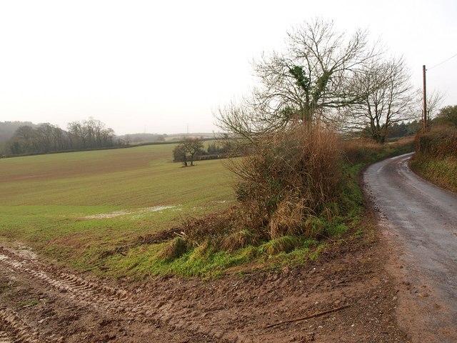 Field near Gooding's Farm