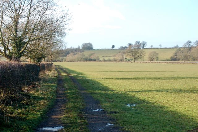 Looking west along a farm track on Marton Moor