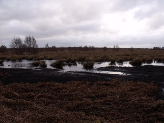 Reflooded Peat Workings on Rawcliffe Moor