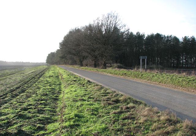 Beechamwell Road west of Drymere