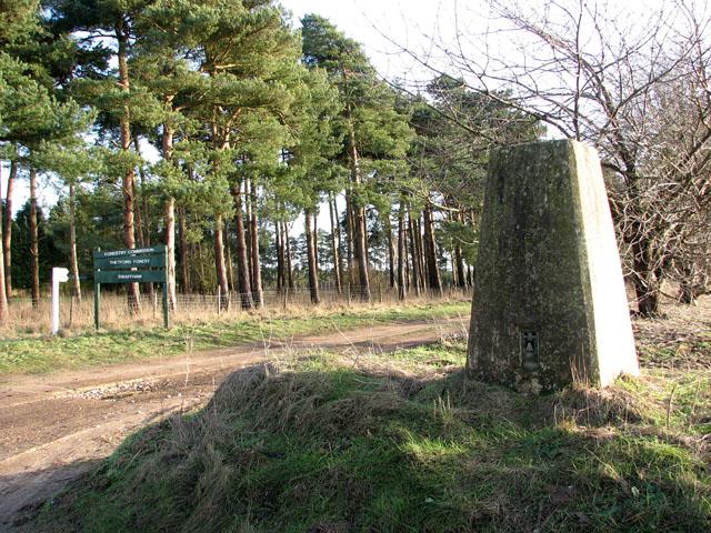 Triangulation pillar by Drymere