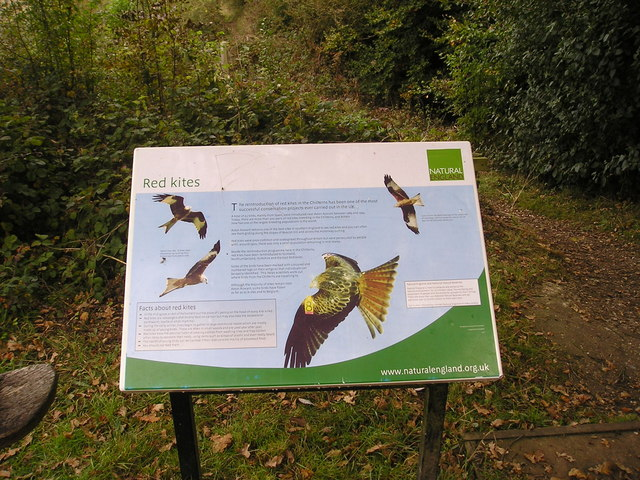 Natural England Red Kite Information Board