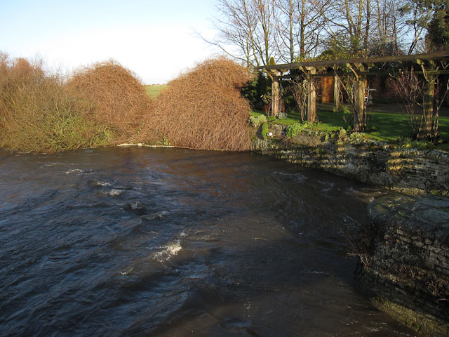 River Lark from Kings Staunch