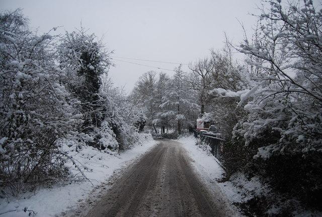 Reynolds Lane (4)