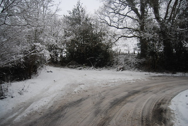 Track off Reynolds Lane