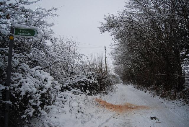 Footpath off Reynolds Lane