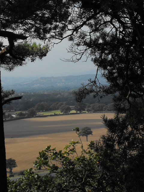 View WNW from Nesscliffe Hill