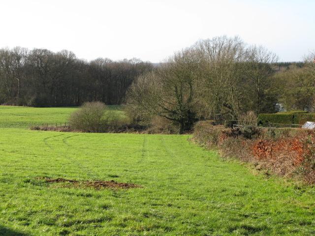 View across field to west of Aldington