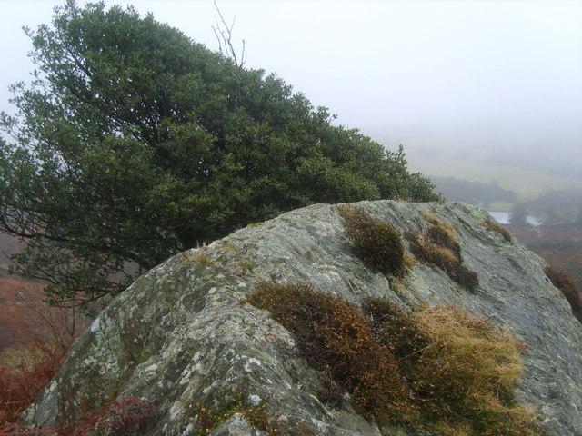 Crag on Newton Fell
