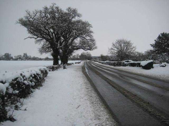 A4104 near Earl's Croome
