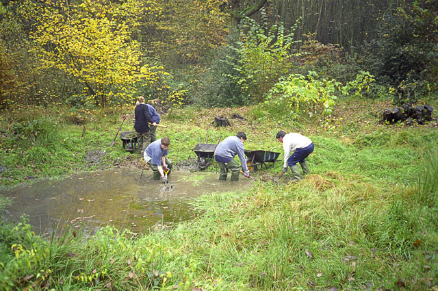 Clearing the pond in Digby's Dell, Pound Wood