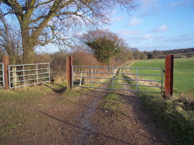 Track and Bridleway junction