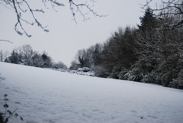 Snow covered field east of the path to Speldhurst Rd