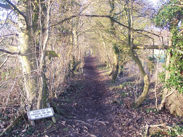 Footpath to the North Downs