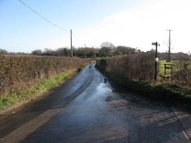 View along Bank Road from entrance to Bank Farm
