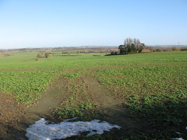 View across the fields to Handen Farm