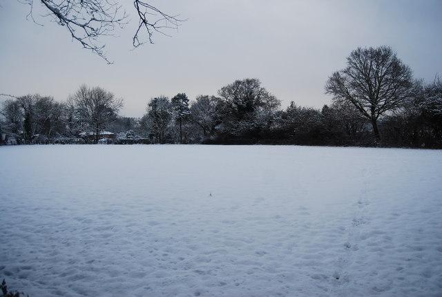 Snow covered field north of the Tunbridge Wells Circular Path