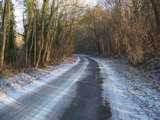 Road in The Warren