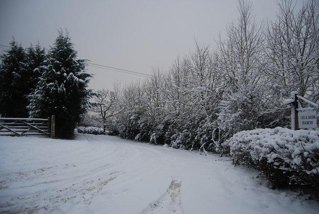 Track to Hillside Farm, Frank's Hollow Lane