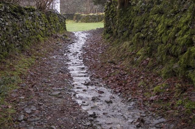 Footpath to Hollins