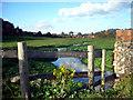 SU7886 : Hamble Brook by Des Blenkinsopp