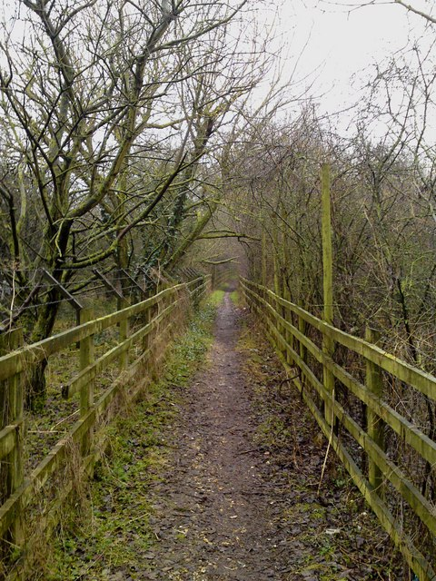 Itchen Way detour path