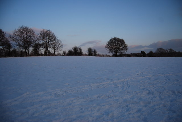 Snow covered field by the Wealdway