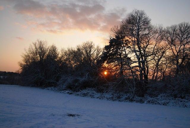 Sunset behind Brookhurst Wood